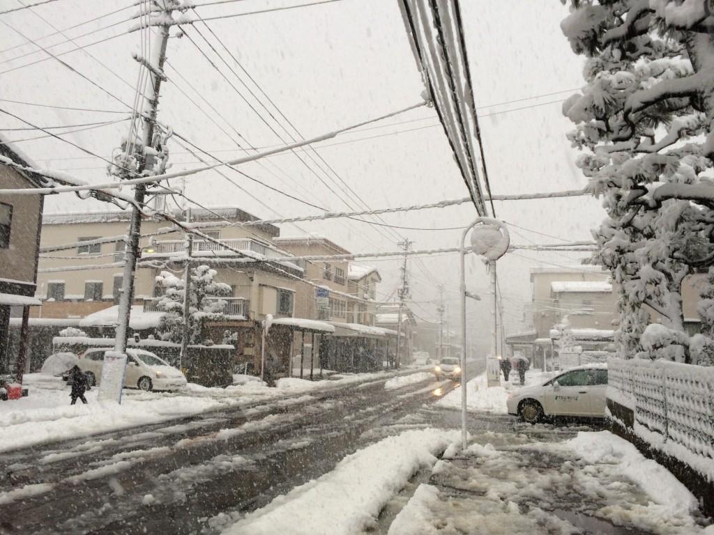 長岡市街地も大雪
