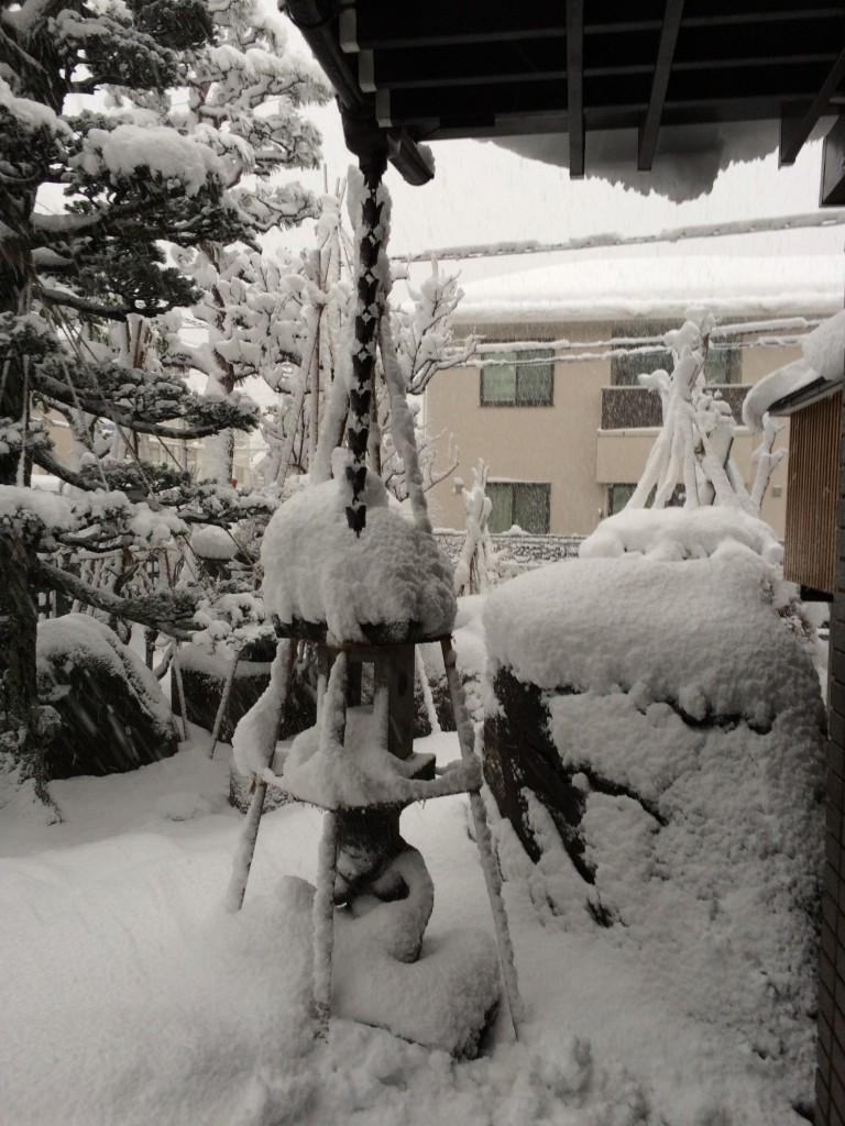 長岡市も大雪。雪囲いの風情、余裕なし03