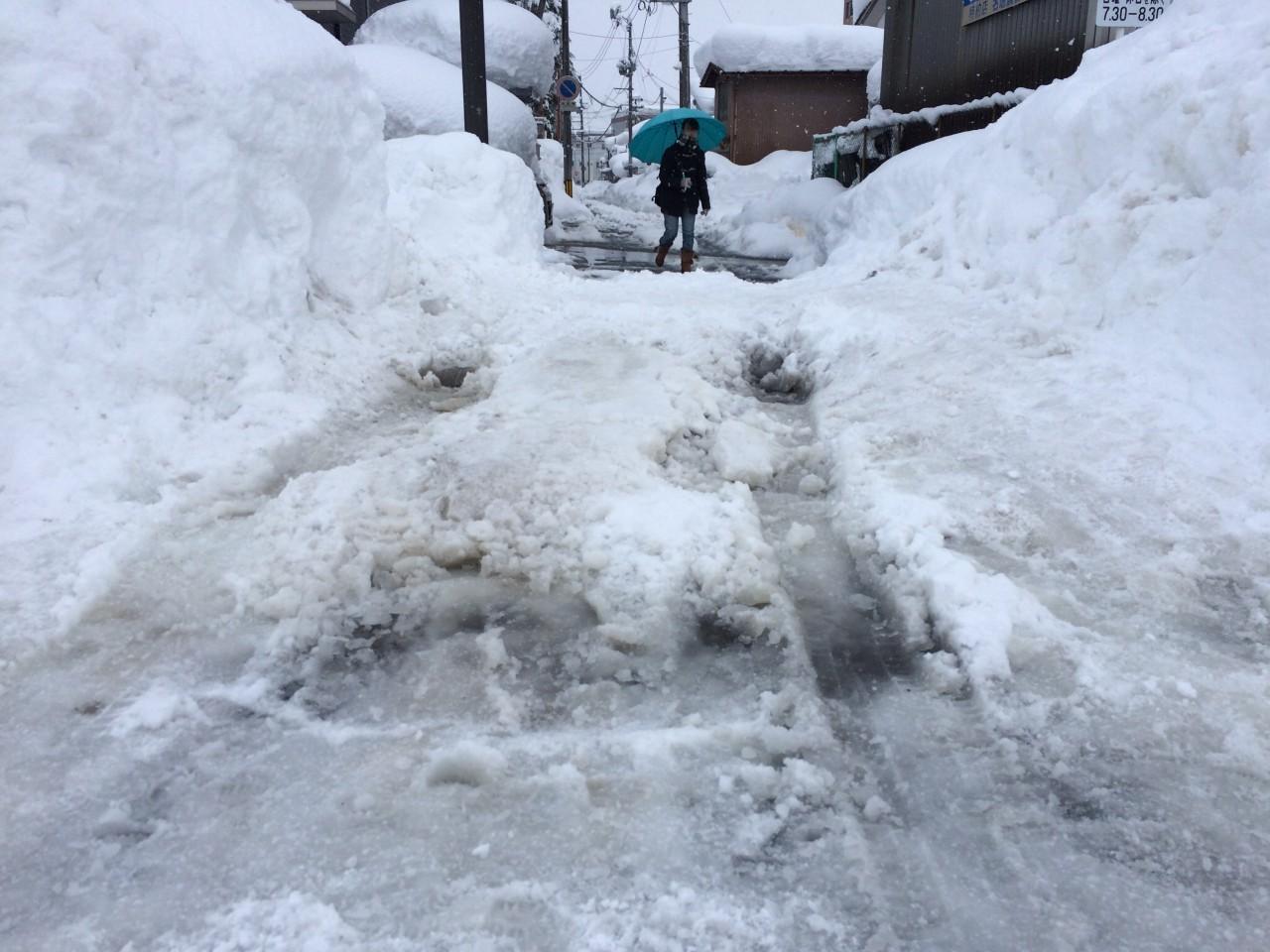 スッタクから脱出後の現場。硬く凍った雪の上に亀が乗った状態でした。