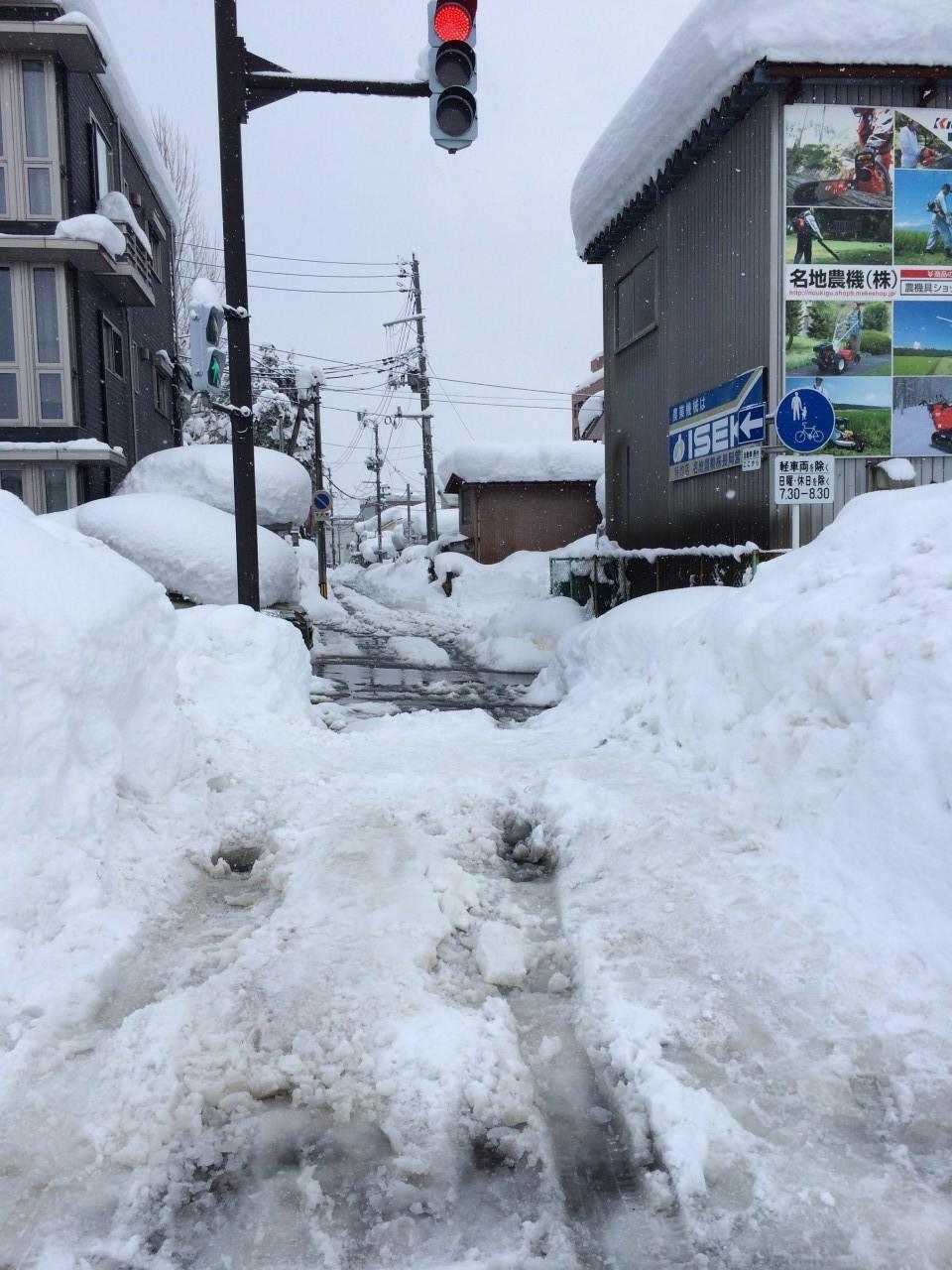 スッタクから脱出後の幹線道路からの交差点近くの現場。硬く凍った雪の上に亀が乗った状態でした。